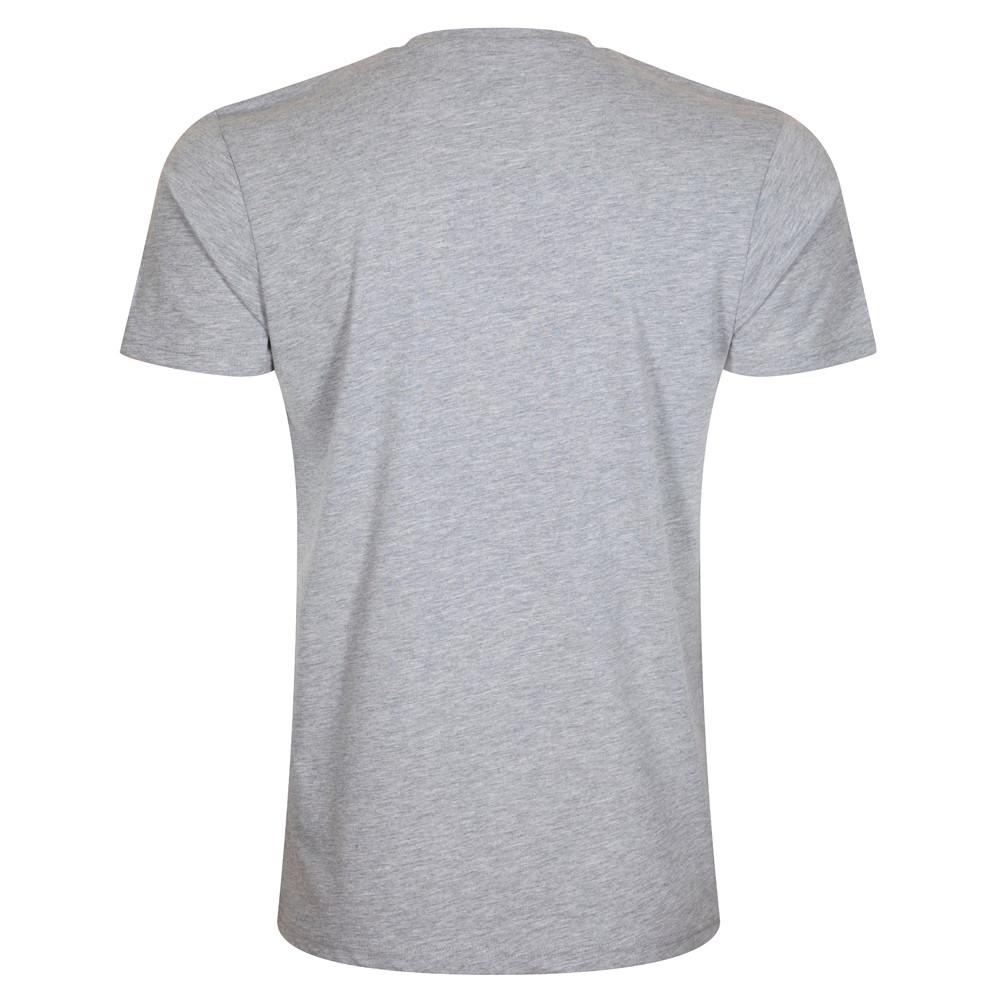 Camiseta Boston Celtics Basket, gris