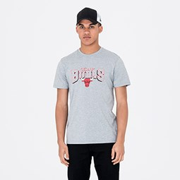 Chicago Bulls Team Grey Tee