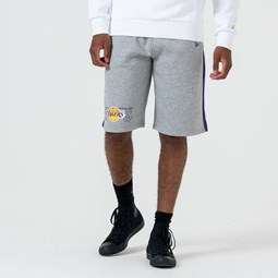 Los Angeles Lakers – Shorts mit Logo – Grau