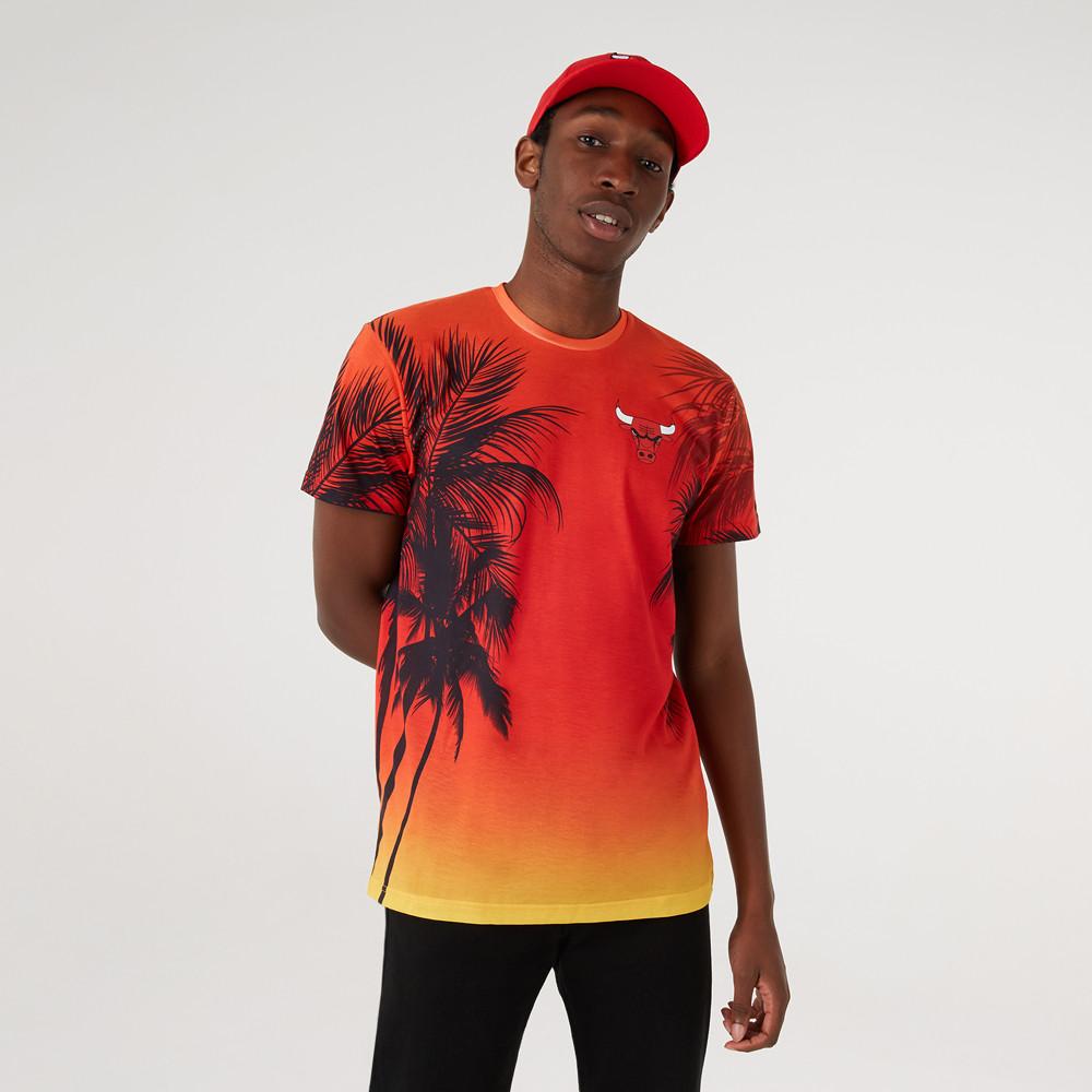 Camiseta Chicago Bulls Summer City Print